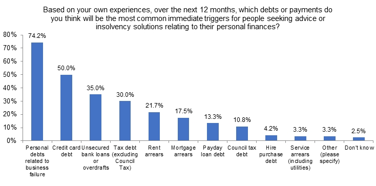 Bar chart showing the kinds of debt that survey respondents expect to be the most common triggers for personal insolvency