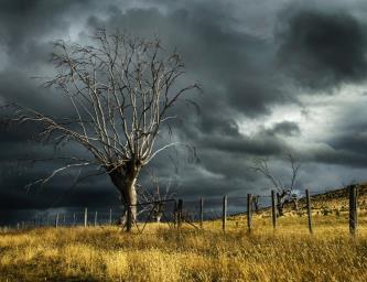 R3's member survey on personal insolvency and COVID-19: Storm on the horizon